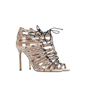 Animal Prints  VALENTINO